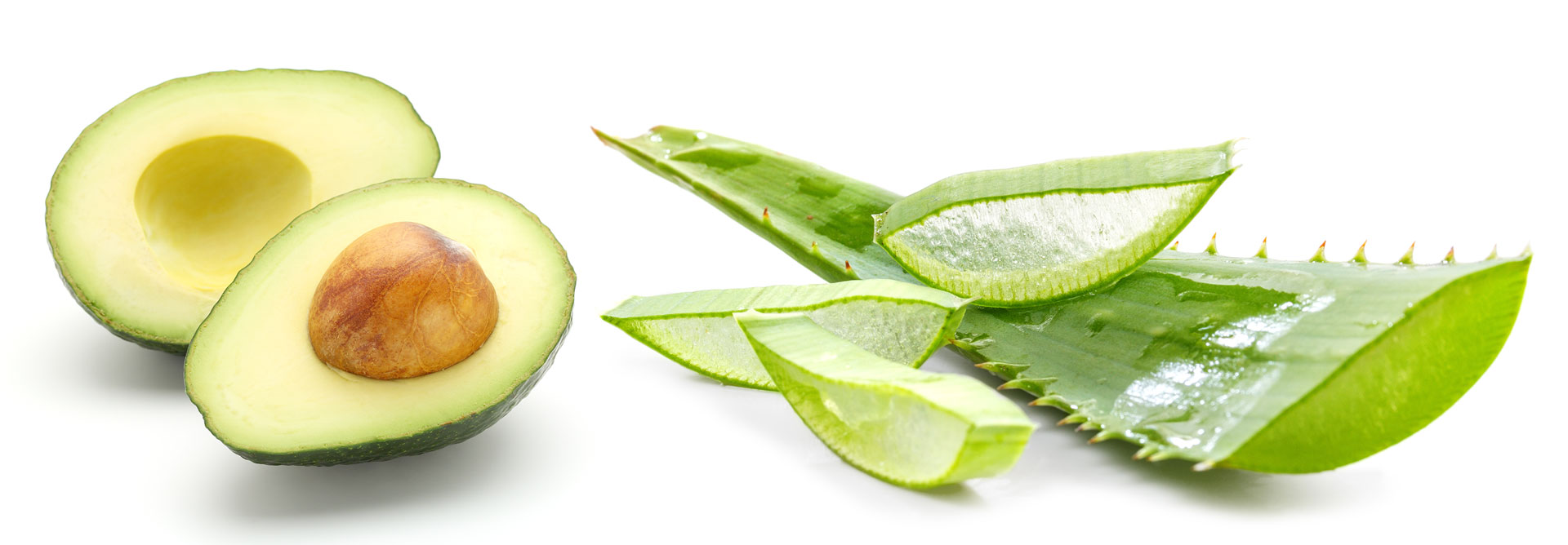 Avocado and Aloe