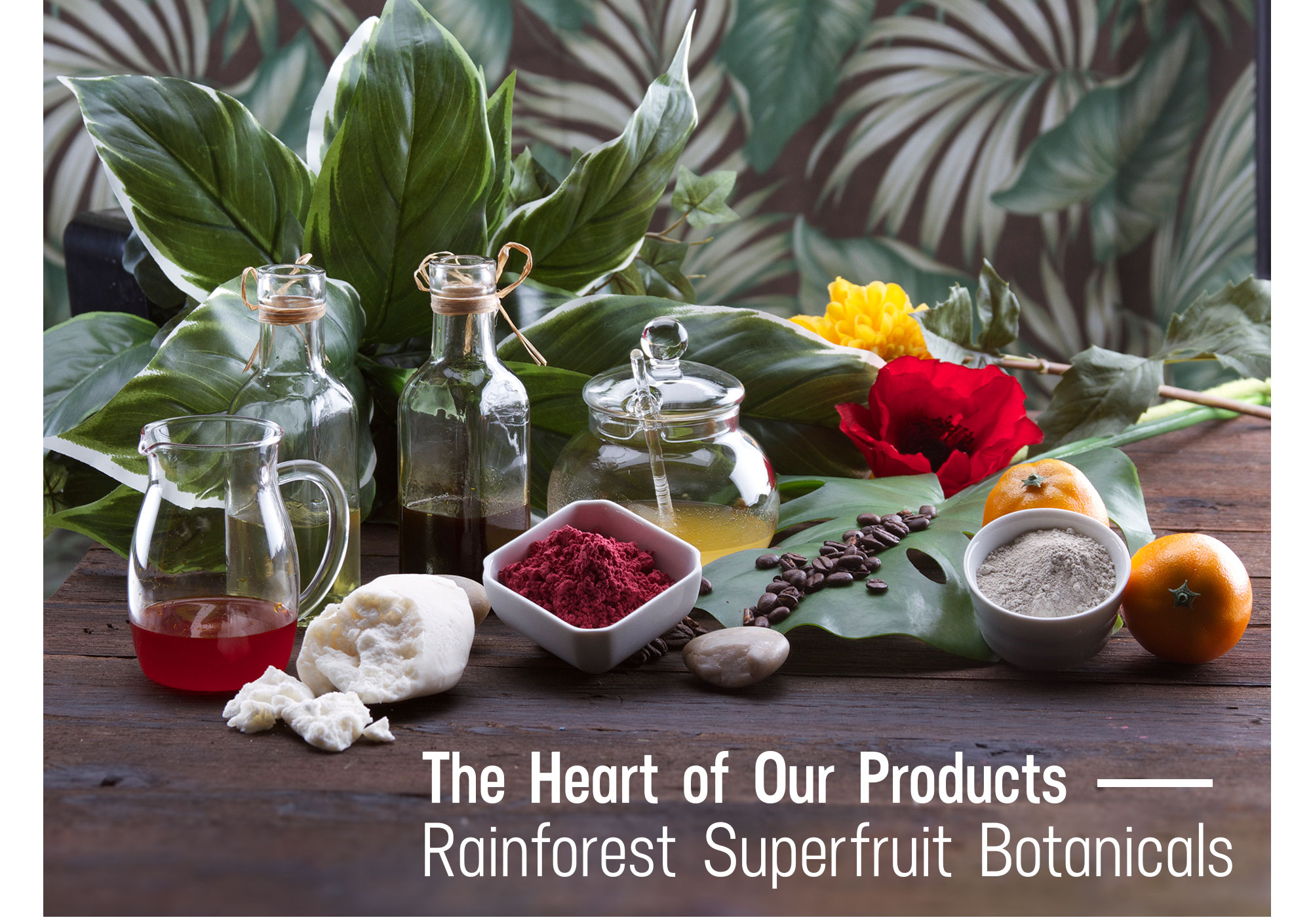 The Heart of Our Products - Rainforest Superfruit Botanicals